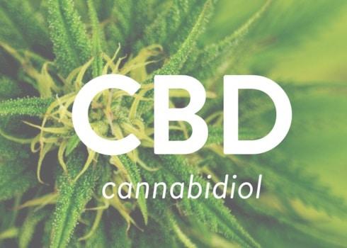 Cannabidiolo CBD legale