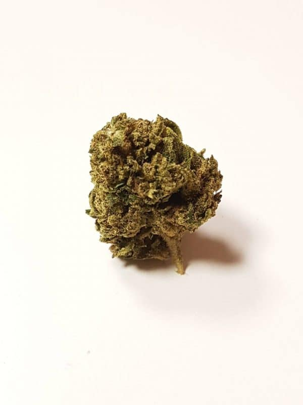 WeedyJack Herer CBD Indoor – 2gr. - Dispo en sachet de 5gr.