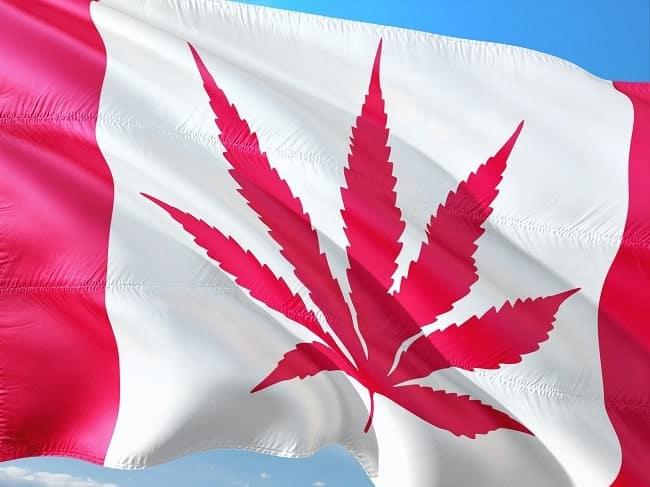 Legal Cannabis in Kanada-min
