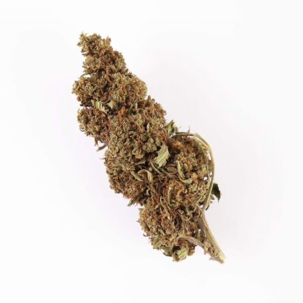 Jack Herer CBD - 500 grame