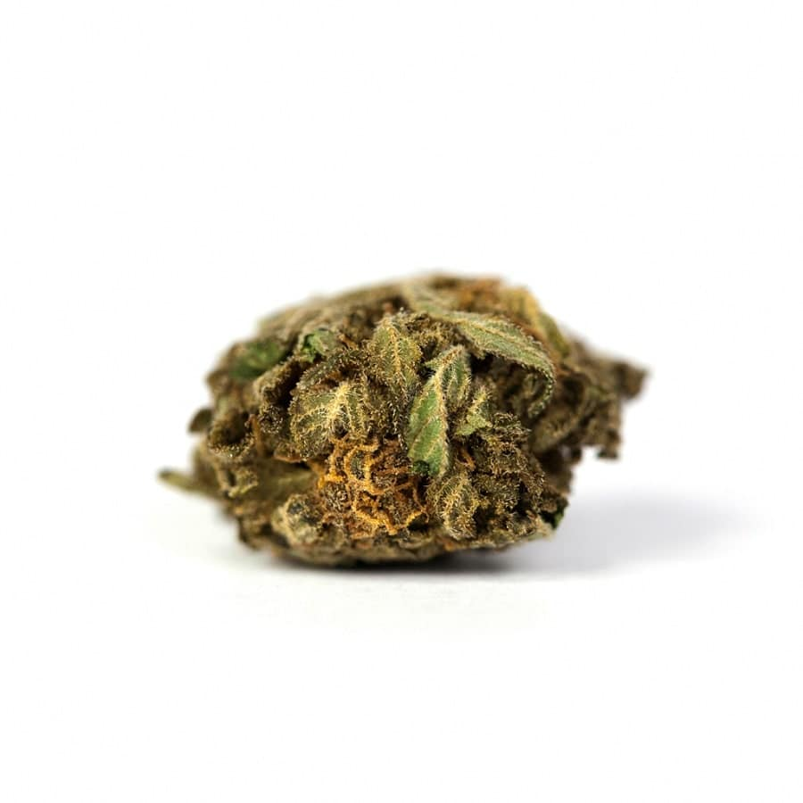 orange-bud-cbd-weedy