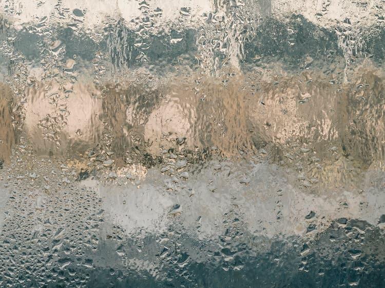 L'umidità è il miglior nemico dei fiori di cannabis light
