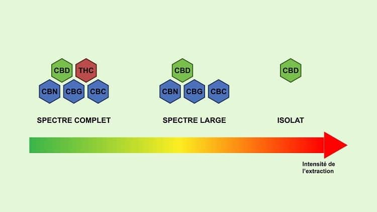 The more complete the spectrum, the more components there are in addition to CBD