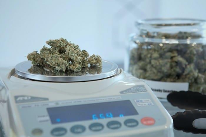 I dispensari di cannabis sono tra i punti vendita più sorvegliati