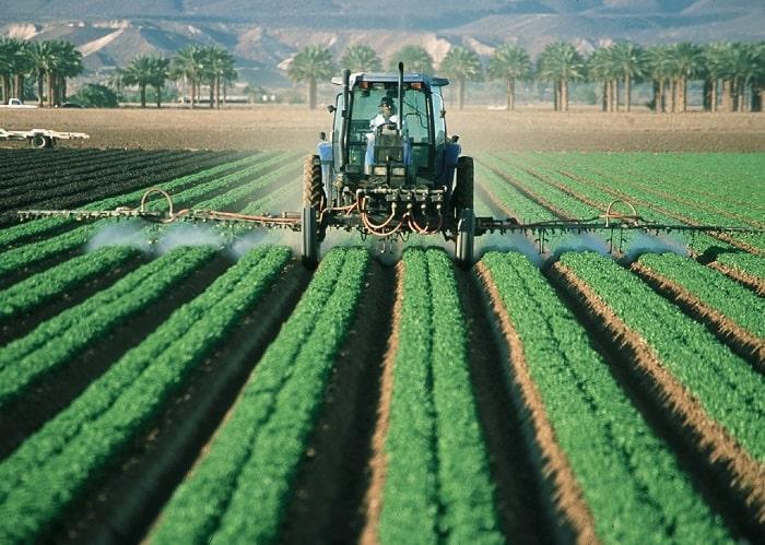 Préférez les produits au CBD sans pesticides