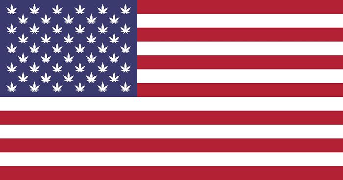 Negli Stati Uniti, la cannabis legale affascina tanto quanto scatena la folla
