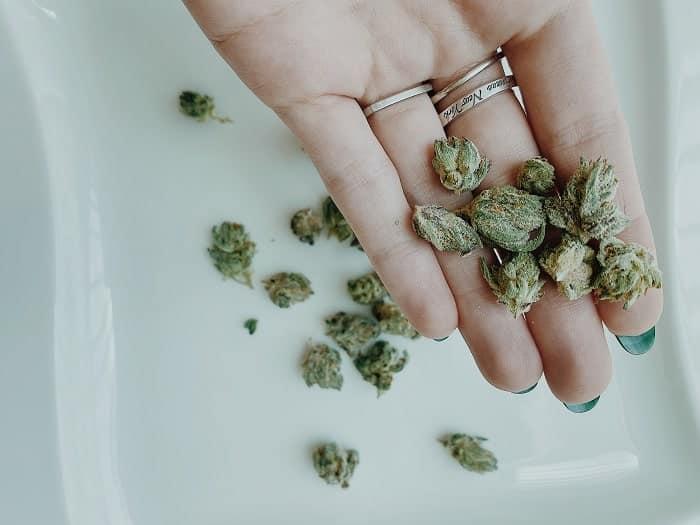 No todos los derivados ligeros del cannabis funcionan igual