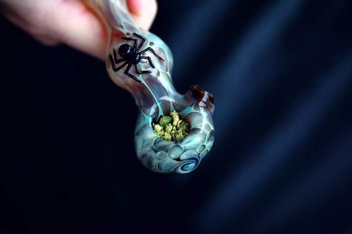 En Spannabis puedes encontrar todo tipo de artículos dedicados al cultivo de cannabis.