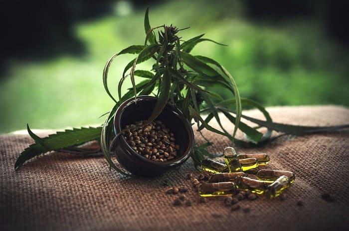 Le CBD en gélule est l'un des nombreux produits dérivés du cannabis light disponibles sur le marché