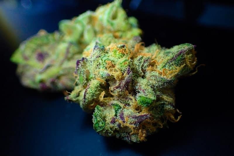 Viola, bianca, arancione, verde: la cannabis colorata è incredibile